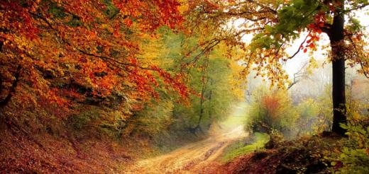 Goldener Herbst Header